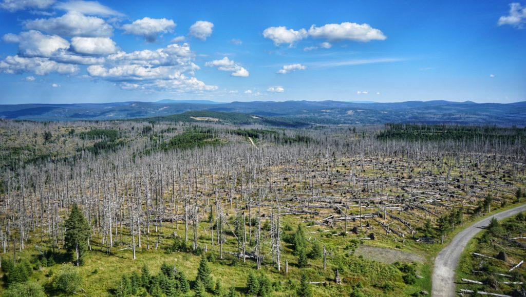 View from Poledník