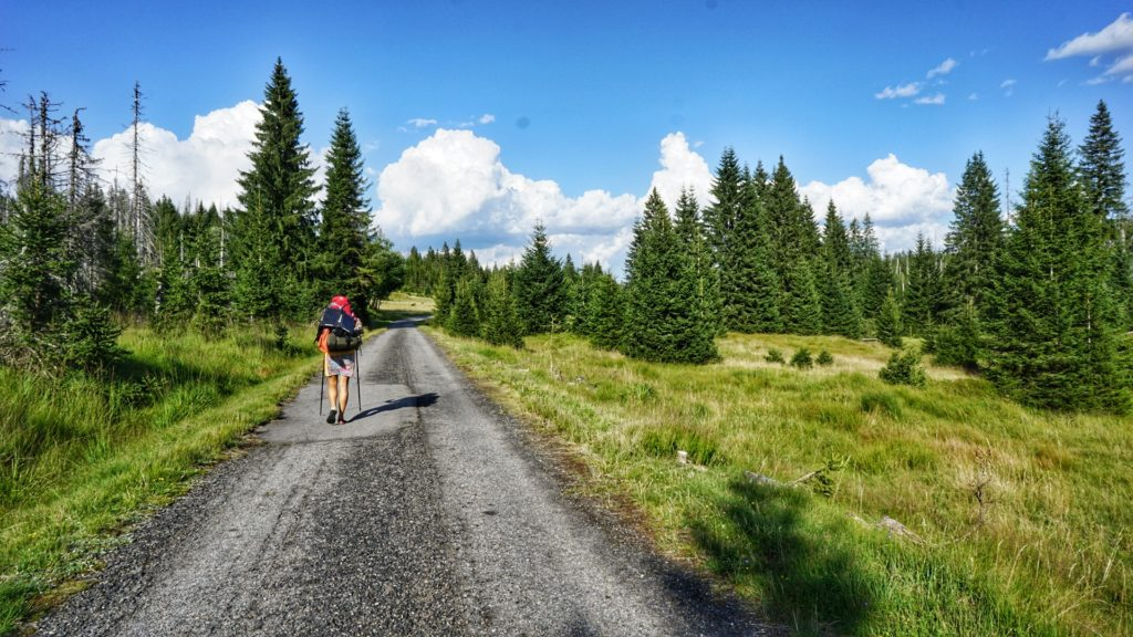 The road to Modrava