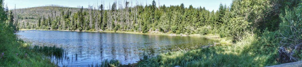 Laka lake - Šumava