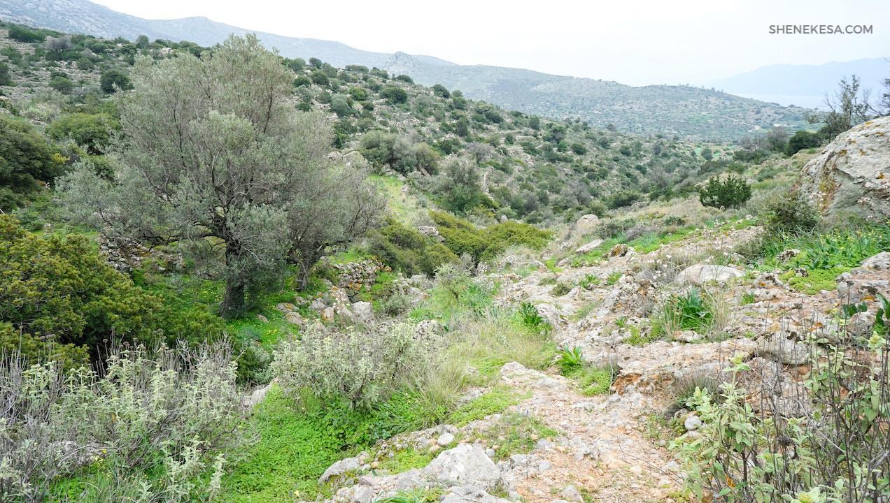 Aegina, trail